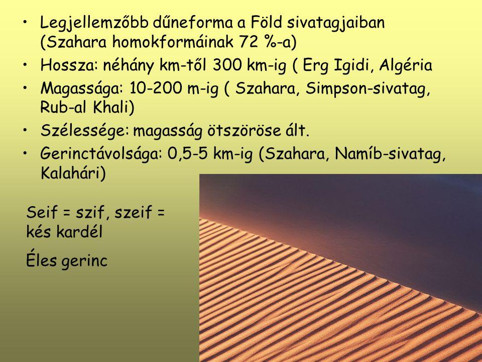 Legjellemzőbb dűneforma a Föld sivatagjaiban (Szahara homokformáinak 72 %-a) Hossza: néhány km-től 300 km-ig ( Erg Igidi, Algéria Magassága: 10-200 m-