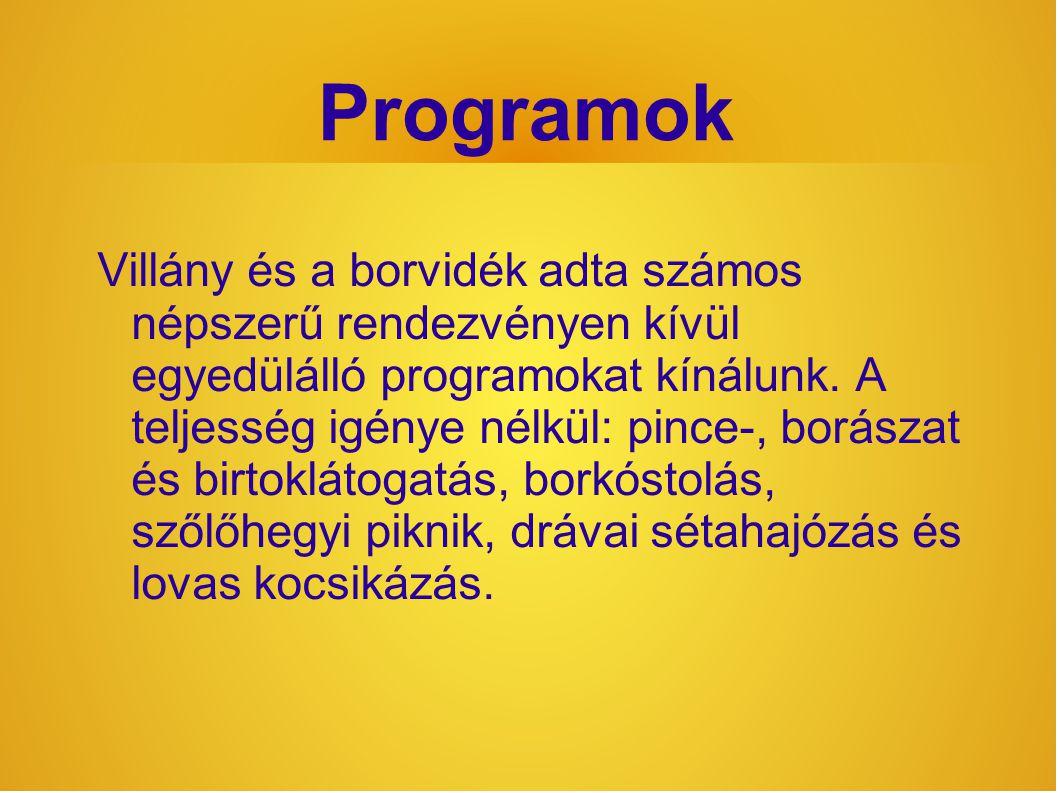 Programok Villány és a borvidék adta számos népszerű rendezvényen kívül egyedülálló programokat kínálunk.