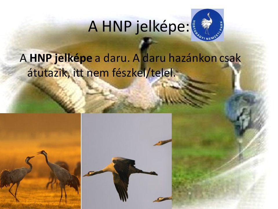 A HNP jelképe: A HNP jelképe a daru. A daru hazánkon csak átutazik, itt nem fészkel/telel.