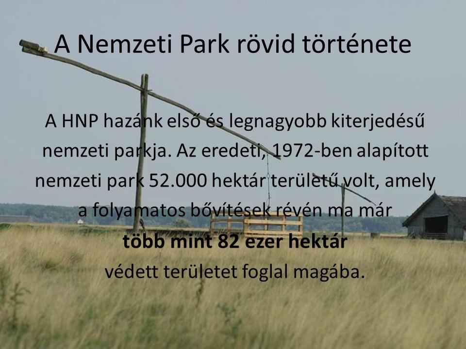 A Nemzeti Park rövid története A HNP hazánk első és legnagyobb kiterjedésű nemzeti parkja. Az eredeti, 1972-ben alapított nemzeti park 52.000 hektár t