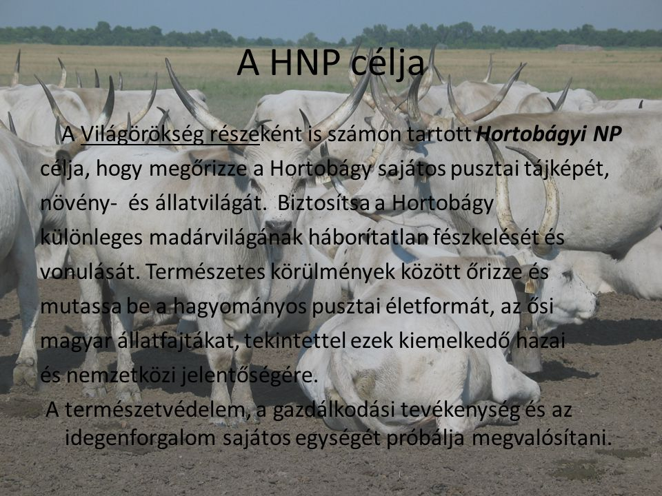 A HNP célja A Világörökség részeként is számon tartott Hortobágyi NP célja, hogy megőrizze a Hortobágy sajátos pusztai tájképét, növény- és állatvilág