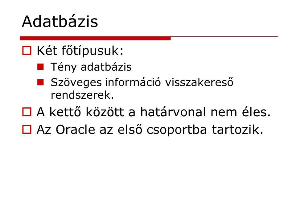 Adatbázis  Két főtípusuk: Tény adatbázis Szöveges információ visszakereső rendszerek.  A kettő között a határvonal nem éles.  Az Oracle az első cso