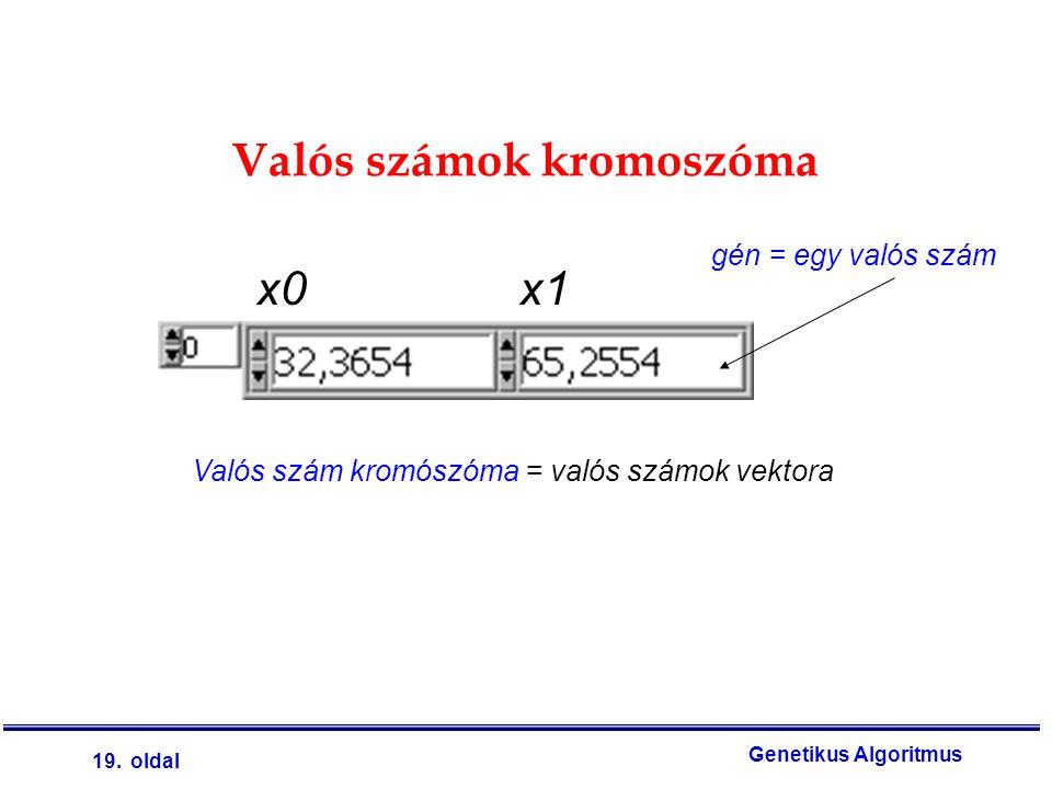 19. oldal Genetikus Algoritmus Valós számok kromoszóma Valós szám kromószóma = valós számok vektora gén = egy valós szám x0x1