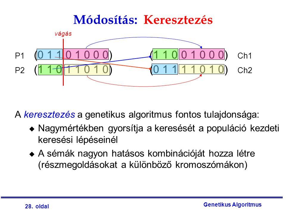 28. oldal Genetikus Algoritmus A keresztezés a genetikus algoritmus fontos tulajdonsága:  Nagymértékben gyorsítja a keresését a populáció kezdeti ker