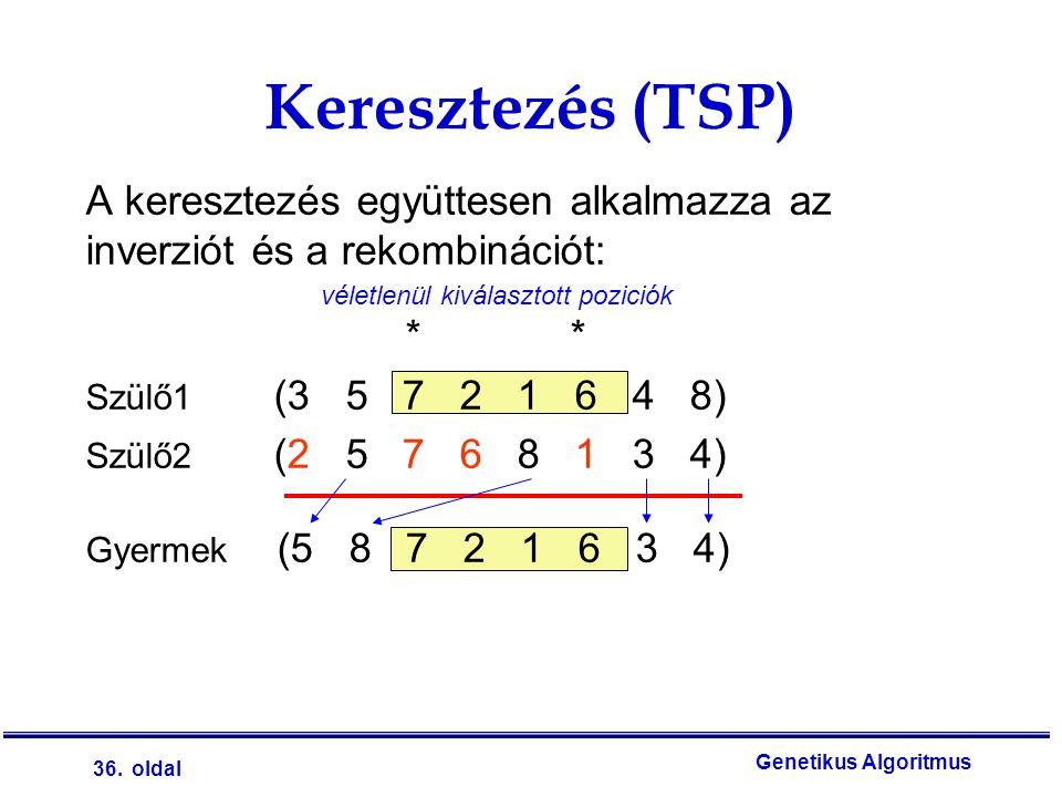 36. oldal Genetikus Algoritmus Keresztezés (TSP) véletlenül kiválasztott poziciók A keresztezés együttesen alkalmazza az inverziót és a rekombinációt: