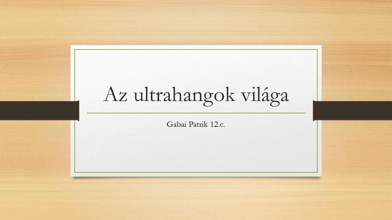 Az ultrahangok világa Gabai Patrik 12.c.