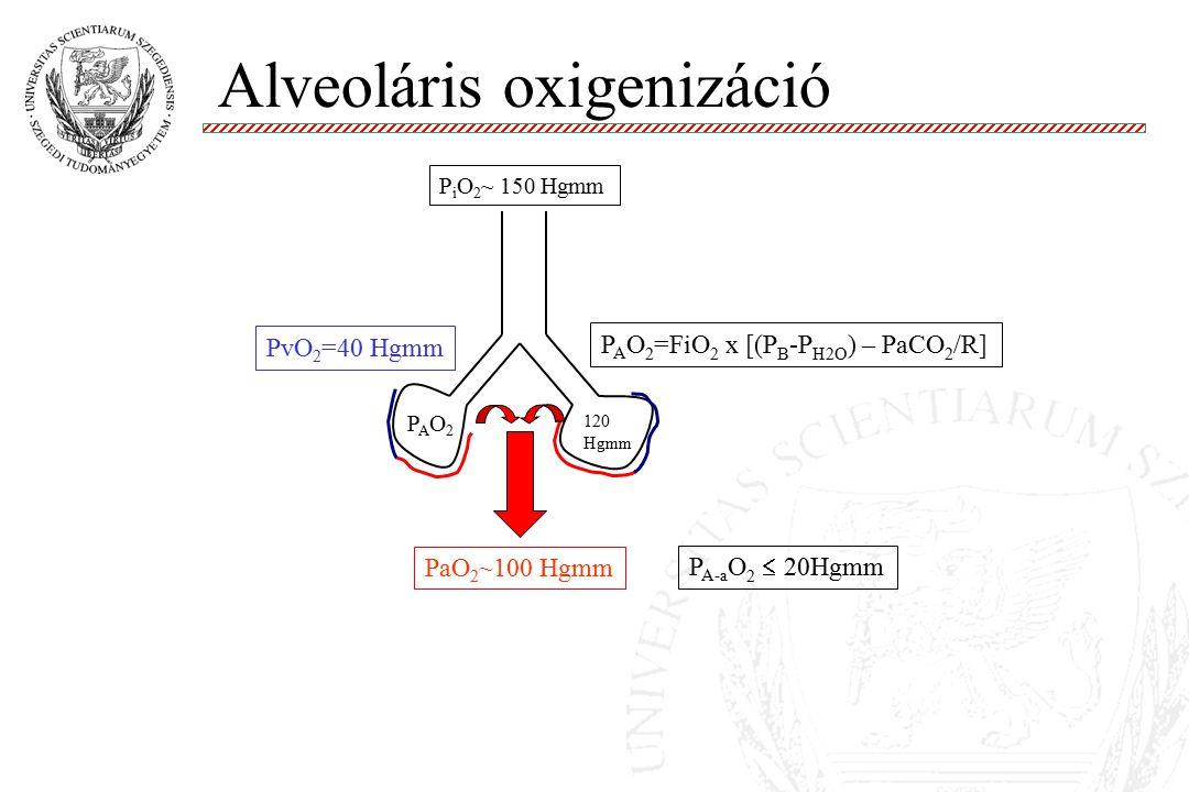 Alveoláris oxigenizáció Molnár '99 PvO 2 =40 Hgmm PAO2PAO2 PaO 2 ~100 Hgmm 120 Hgmm P A O 2 =FiO 2 x [(P B -P H2O ) – PaCO 2 /R] P A-a O 2  20Hgmm P