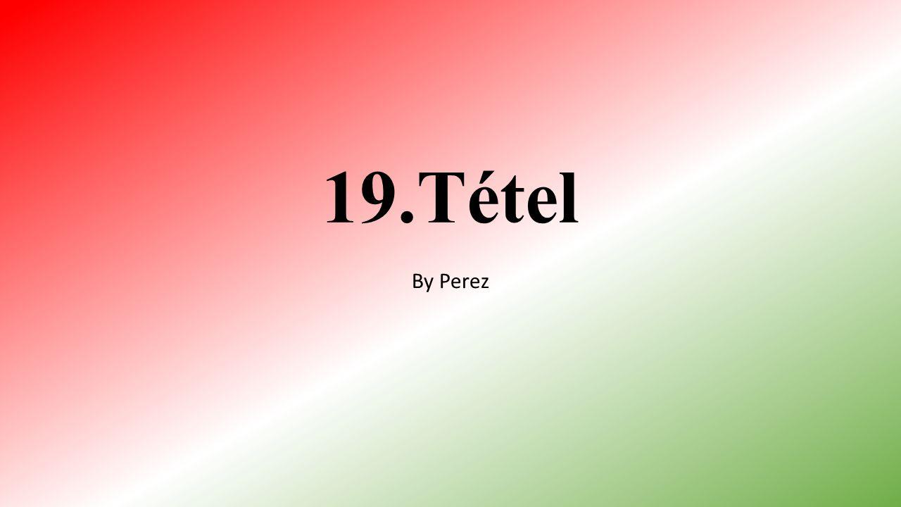 19.Tétel By Perez