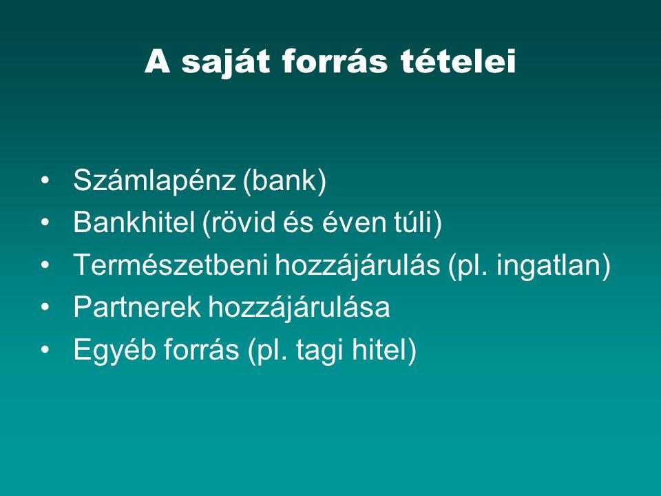 A saját forrás tételei Számlapénz (bank) Bankhitel (rövid és éven túli) Természetbeni hozzájárulás (pl. ingatlan) Partnerek hozzájárulása Egyéb forrás