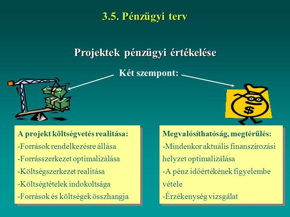 Projektek pénzügyi értékelése 3.5. Pénzügyi terv Két szempont: A projekt költségvetés realitása: -Források rendelkezésre állása -Forrásszerkezet optim