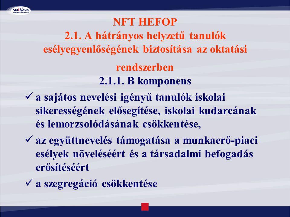 NFT HEFOP 2.1. A hátrányos helyzetű tanulók esélyegyenlőségének biztosítása az oktatási rendszerben 2.1.1. B komponens a sajátos nevelési igényű tanul