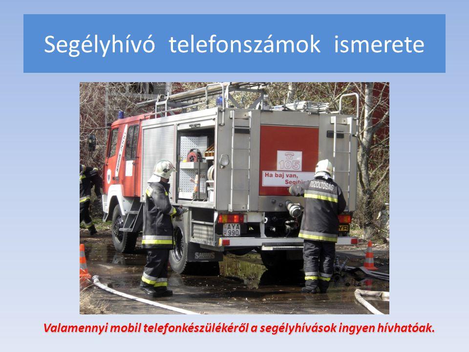 Segélyhívó telefonszámok ismerete Valamennyi mobil telefonkészülékéről a segélyhívások ingyen hívhatóak. Valamennyi mobil telefonkészülékéről a segély