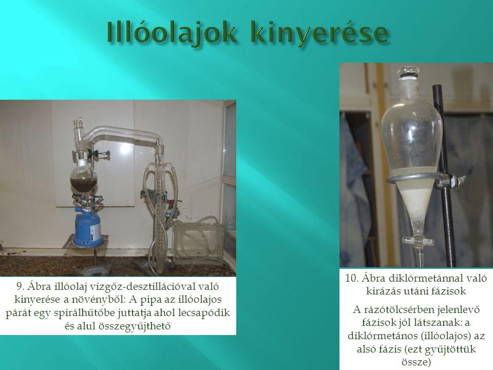 9. Ábra illóolaj vízgőz-desztillációval való kinyerése a növényből: A pipa az illóolajos párát egy spirálhűtőbe juttatja ahol lecsapódik és alul össze