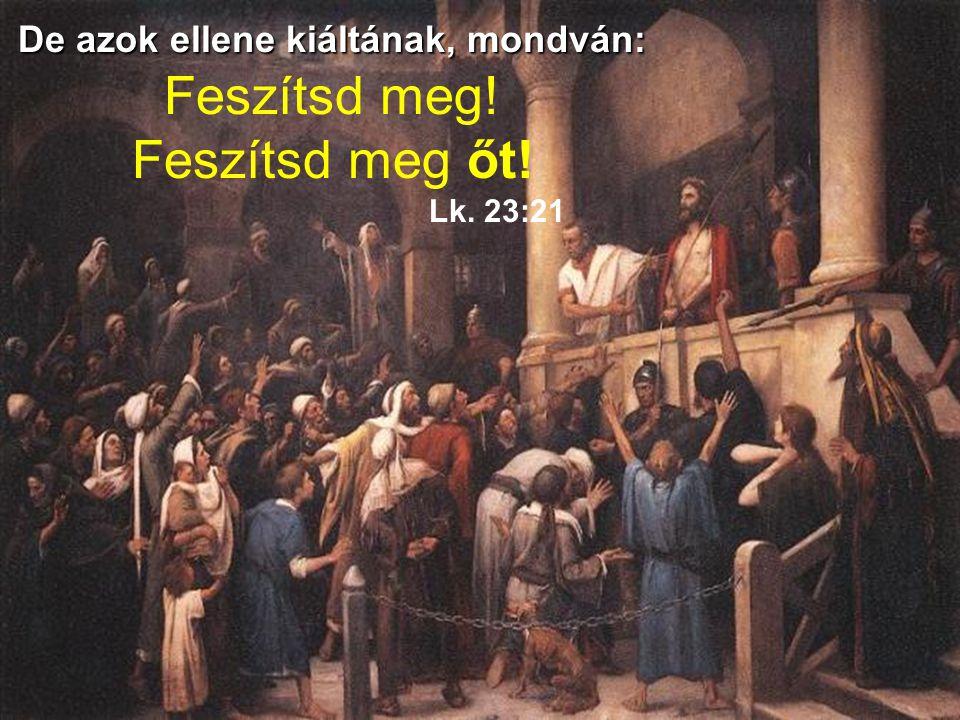…semmi olyan bűnt nem találtam ez emberben, a mivel őt vádoljátok Lk. 23:14