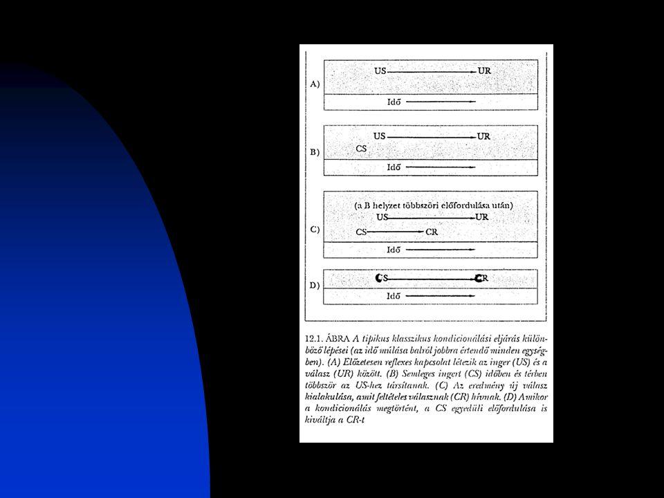 Terápia Hatékonyságelvárások módosítása Modellkövetés Öninstrukciók