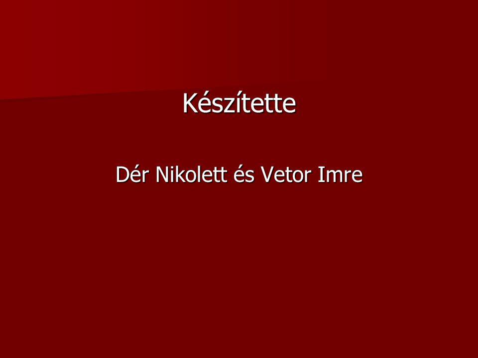 Készítette Dér Nikolett és Vetor Imre