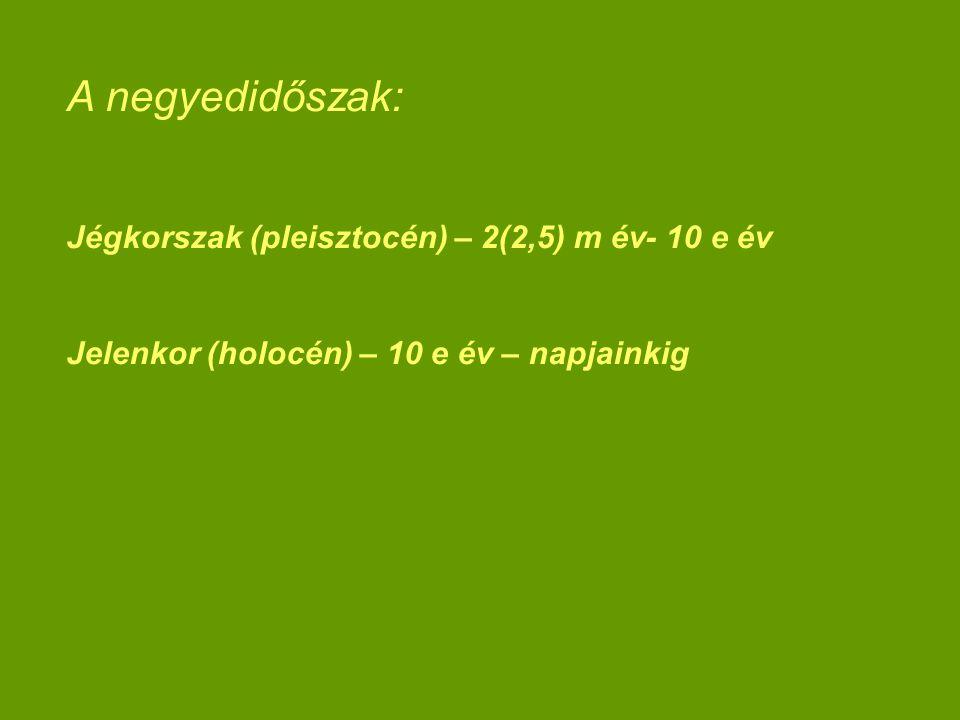 A negyedidőszak: Jégkorszak (pleisztocén) – 2(2,5) m év- 10 e év Jelenkor (holocén) – 10 e év – napjainkig