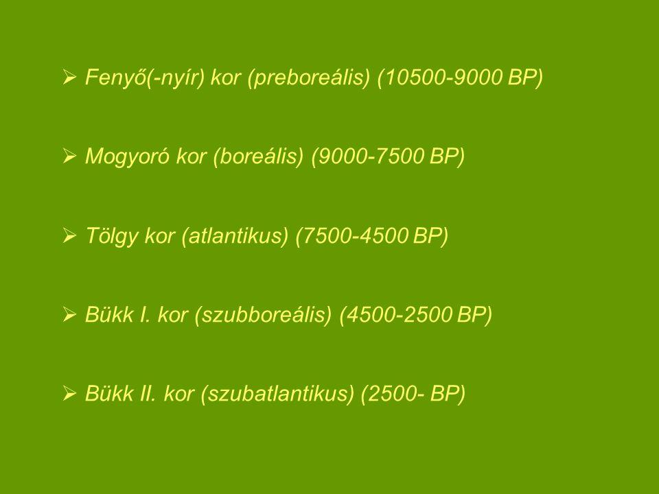  Fenyő(-nyír) kor (preboreális) (10500-9000 BP)  Mogyoró kor (boreális) (9000-7500 BP)  Tölgy kor (atlantikus) (7500-4500 BP)  Bükk I. kor (szubbo