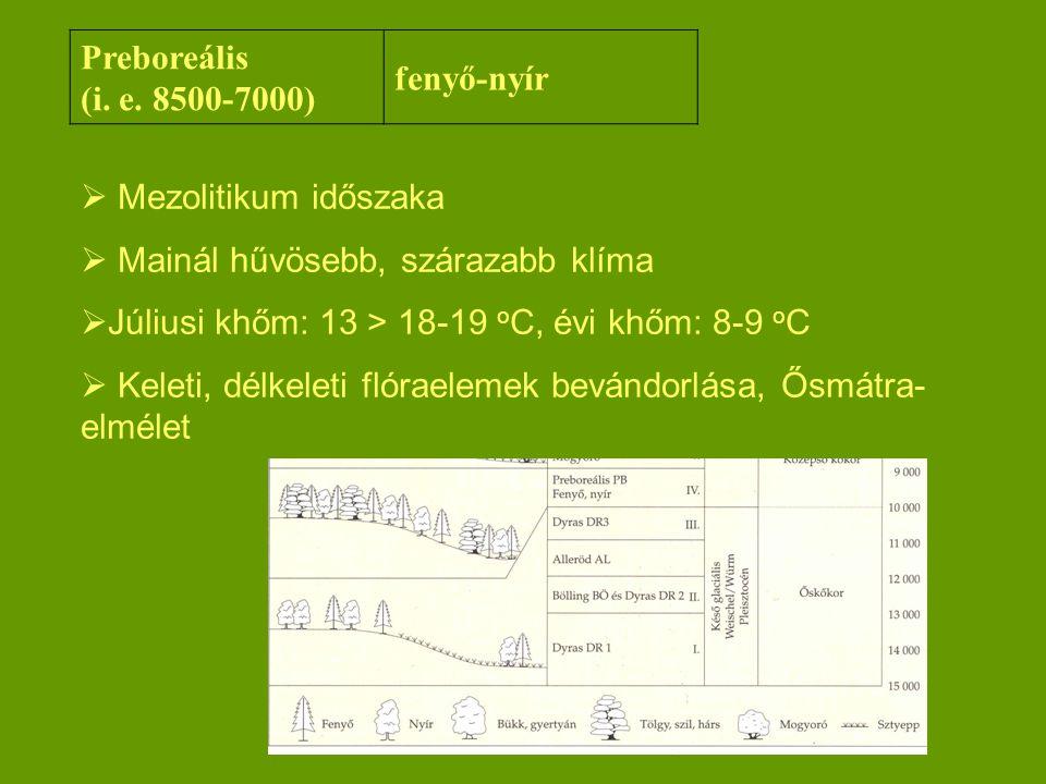 Preboreális (i. e. 8500-7000) fenyő-nyír  Mezolitikum időszaka  Mainál hűvösebb, szárazabb klíma  Júliusi khőm: 13 > 18-19 o C, évi khőm: 8-9 o C 