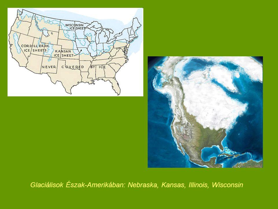 Stadiális – 25-23 e év BP: jelentős lehűlés  Északi-középhegység: fás növényzet arányának csökkenése, hideg kontinentális tundra és sztyepp keveréke: fűfélék, ürömfélék, kőtörőfüvek, gombafüvek  Alföld: nyír, erdeifenyő visszaszorulása, vörösfenyő, lucfenyő elterjedése, fűfélék, libatopfélék, ürömfélék dominanciája 23-13 e év BP: előző két szakasz periodikus változása 15-13 e év BP: hidegkedvelő növényzet utolsó megjelenése a hidegebb mikroklímájú területeken (törpenyír, magcsákó)