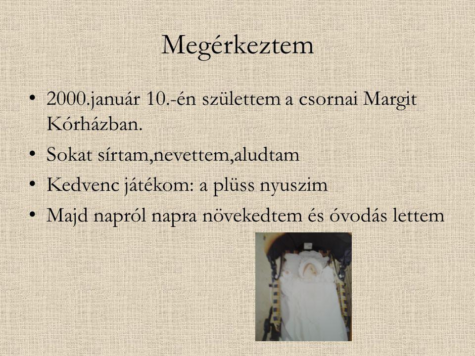 Megérkeztem 2000.január 10.-én születtem a csornai Margit Kórházban. Sokat sírtam,nevettem,aludtam Kedvenc játékom: a plüss nyuszim Majd napról napra