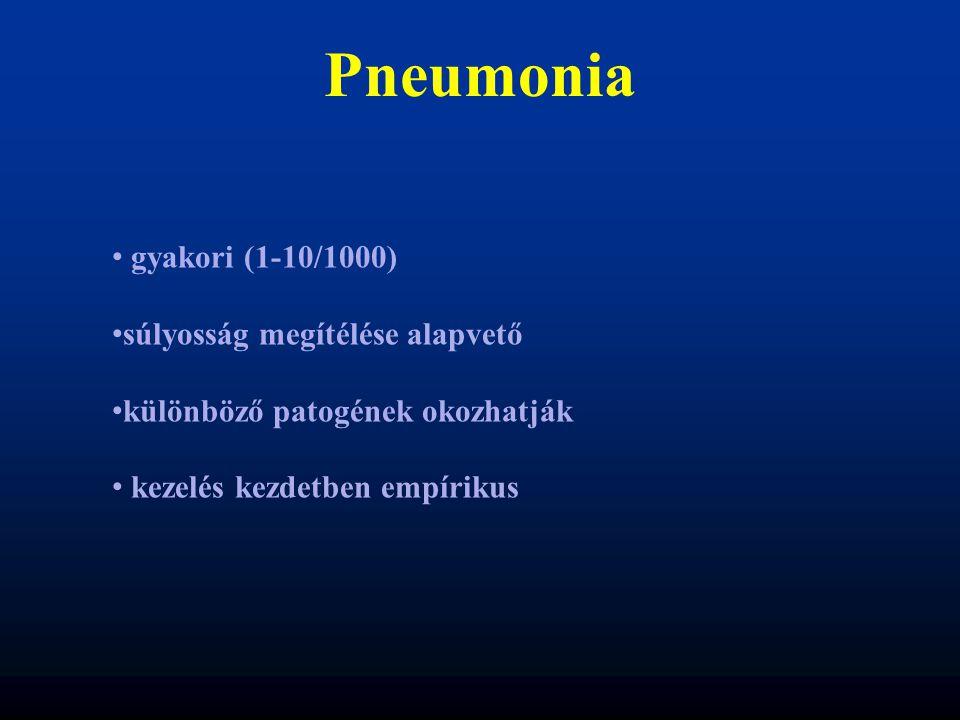 Pneumonia gyakori (1-10/1000) súlyosság megítélése alapvető különböző patogének okozhatják kezelés kezdetben empírikus