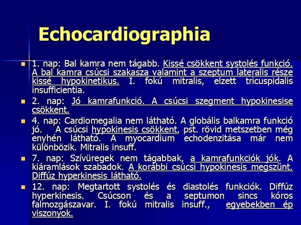 Echocardiographia 1.nap: Bal kamra nem tágabb. Kissé csökkent systolés funkció.