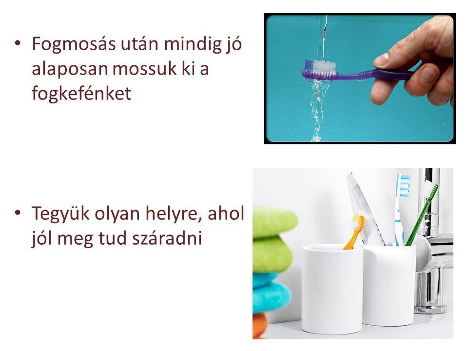 Fogmosás után mindig jó alaposan mossuk ki a fogkefénket Tegyük olyan helyre, ahol jól meg tud száradni