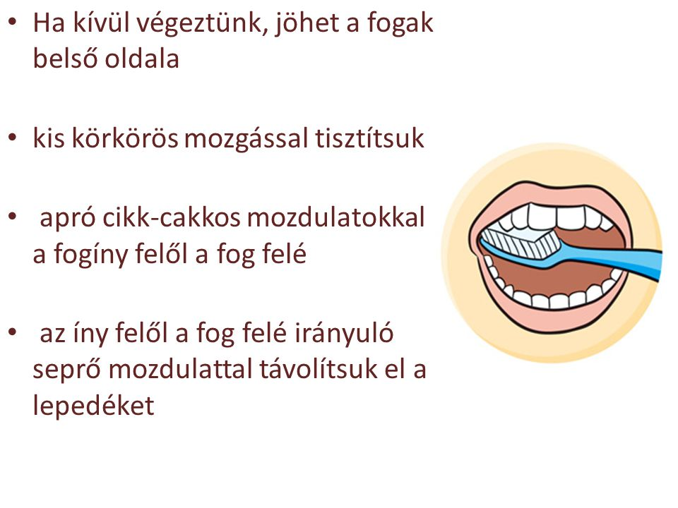Ha kívül végeztünk, jöhet a fogak belső oldala kis körkörös mozgással tisztítsuk apró cikk-cakkos mozdulatokkal a fogíny felől a fog felé az íny felől