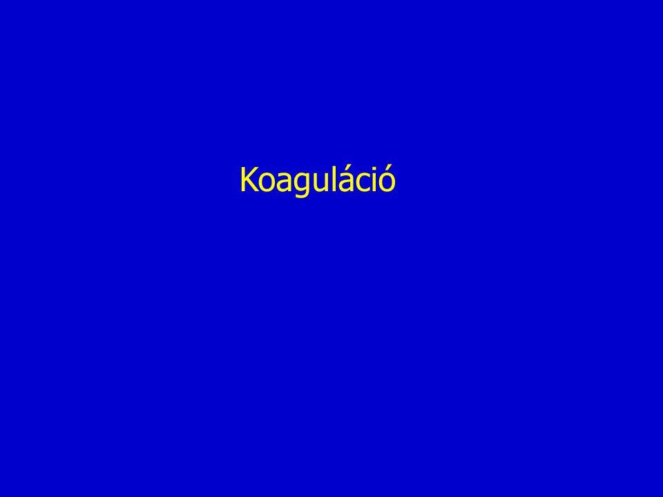 Koaguláció