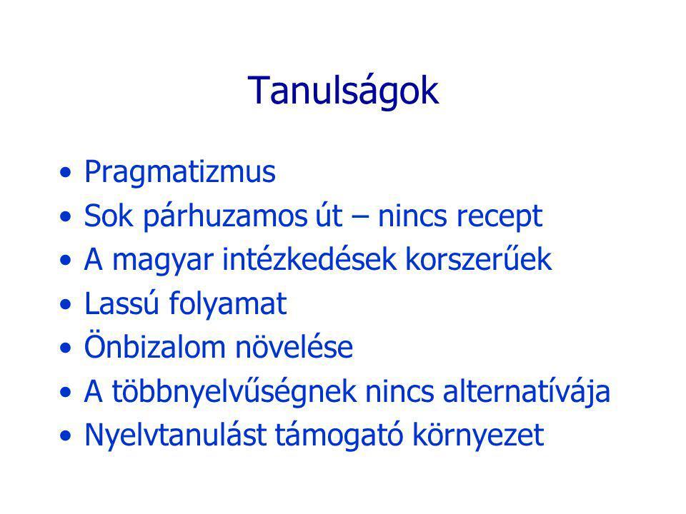 Tanulságok Pragmatizmus Sok párhuzamos út – nincs recept A magyar intézkedések korszerűek Lassú folyamat Önbizalom növelése A többnyelvűségnek nincs alternatívája Nyelvtanulást támogató környezet