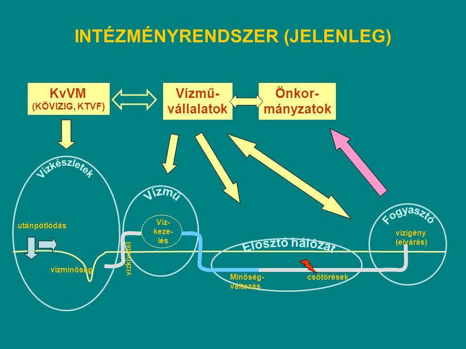 INTÉZMÉNYRENDSZER (JELENLEG) utánpótlódás vízminőség Víz- keze- lés vízkivétel Minőség- változás csőtörések vízigény (elvárás) KvVM (KÖVIZIG, KTVF) Ví