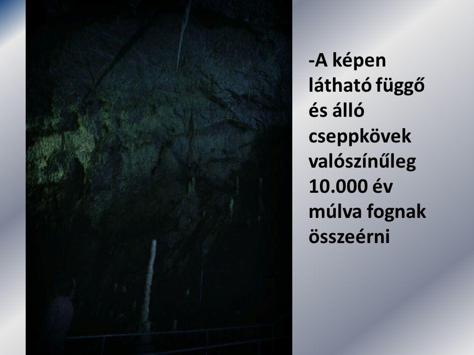 -A képen látható függő és álló cseppkövek valószínűleg 10.000 év múlva fognak összeérni