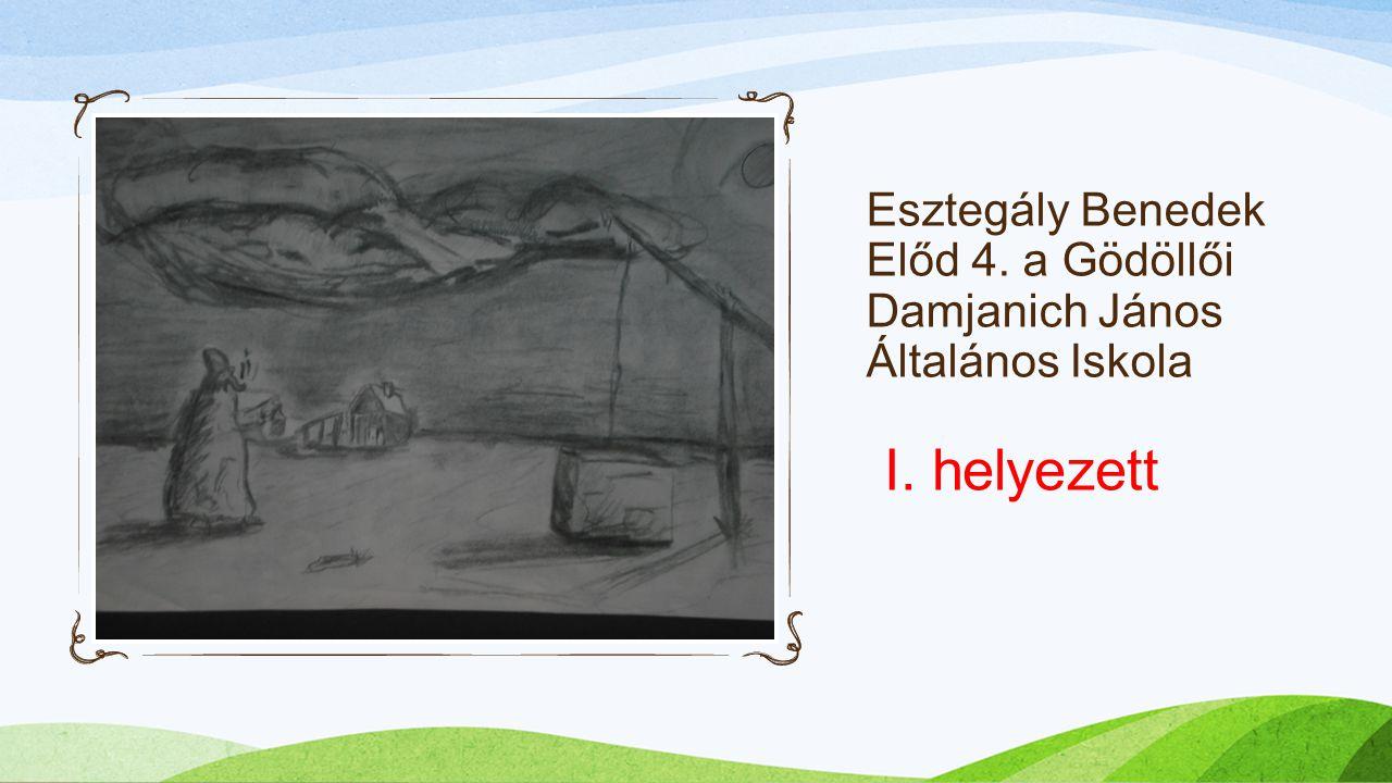 Esztegály Benedek Előd 4. a Gödöllői Damjanich János Általános Iskola I. helyezett