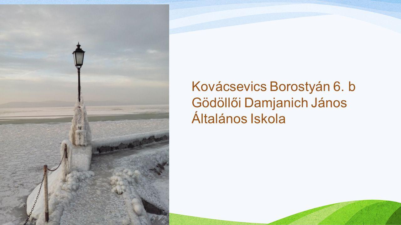 Kovácsevics Borostyán 6. b Gödöllői Damjanich János Általános Iskola