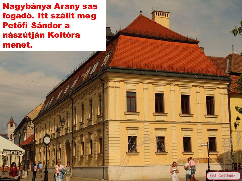 Nagykárolyban ismerte meg Petőfi Sándor Szendrey Júliát Károlyi kastély