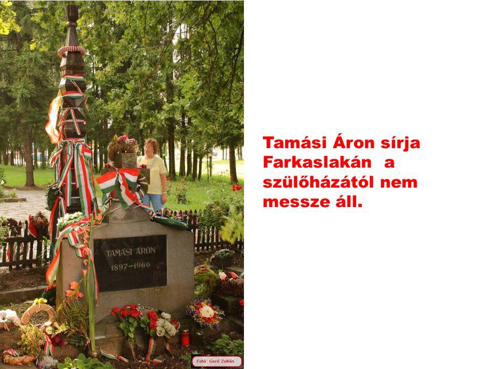 Farkaslaka: Tamási Áron szülőháza