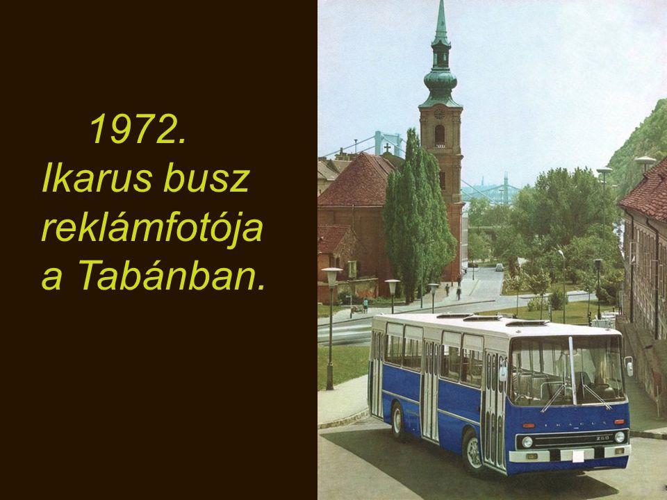 1972. A tatai edzőtáborban Kádár János kezet fog a későbbi Köztársasági elnökkel, Schmitt Pállal,aki a bal kezét nyújtotta.