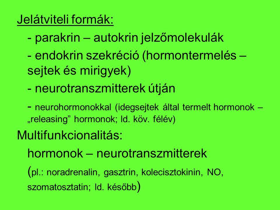 Jelátviteli formák: - parakrin – autokrin jelzőmolekulák - endokrin szekréció (hormontermelés – sejtek és mirigyek) - neurotranszmitterek útján - neur