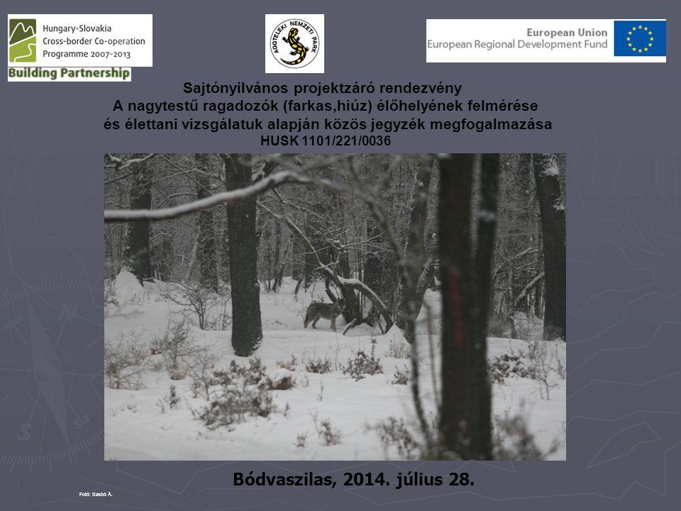 A nagytestű ragadozók (farkas, hiúz) élőhelyének felmérése és élettani vizsgálatuk alapján közös jegyzék megfogalmazása HUSK/1101/2.2.1/0036 Szlovákiában 1980 és 1989 közötti időszakban jelentősen megnőtt a a farkaslétszám, és jelentősen megnőttek az elejtések is.