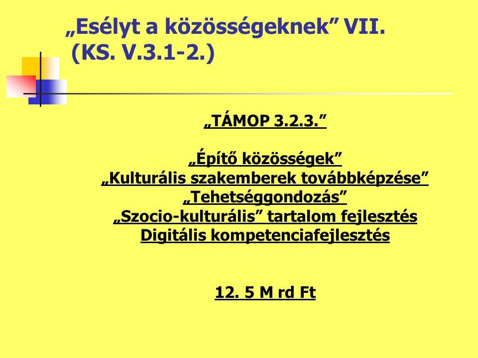 """""""TÁMOP 3.2.3. """"Építő közösségek """"Kulturális szakemberek továbbképzése """"Tehetséggondozás """"Szocio-kulturális tartalom fejlesztés Digitális kompetenciafejlesztés 12."""