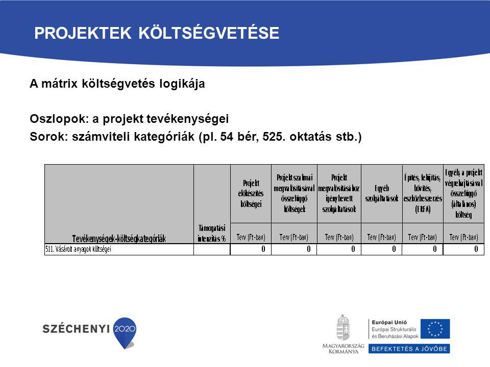 TERVEZHETŐ TEVÉKENYSÉGEK - OSZLOPOK 1.Projekt előkészítés (ESZA) 2.Projekt szakmai megvalósításával összefüggő költségek (ESZA) 3.Projekt megvalósításhoz igénybe vett szolgáltatások (ESZA) 4.Egyéb szolgáltatások (ESZA) 5.Beruházások (ERFA) 6.Egyéb, a projekt végrehajtásával összefüggő általános költség (ESZA)