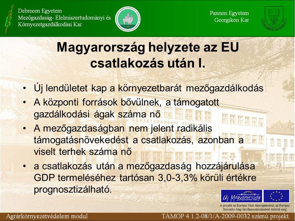 Magyarország helyzete az EU csatlakozás után I.