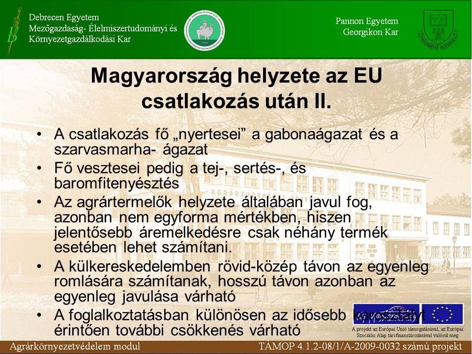 Magyarország helyzete az EU csatlakozás után II.