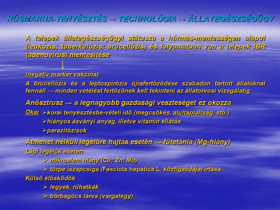 A telepek állategészségügyi státusza a hármas-mentességen alapul (leukózis; tuberkulózis; brucellózis) és folyamatban van a telepek IBR (adenovírus) m