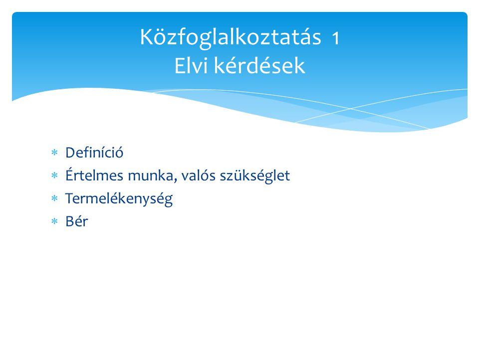  Definíció  Értelmes munka, valós szükséglet  Termelékenység  Bér Közfoglalkoztatás 1 Elvi kérdések