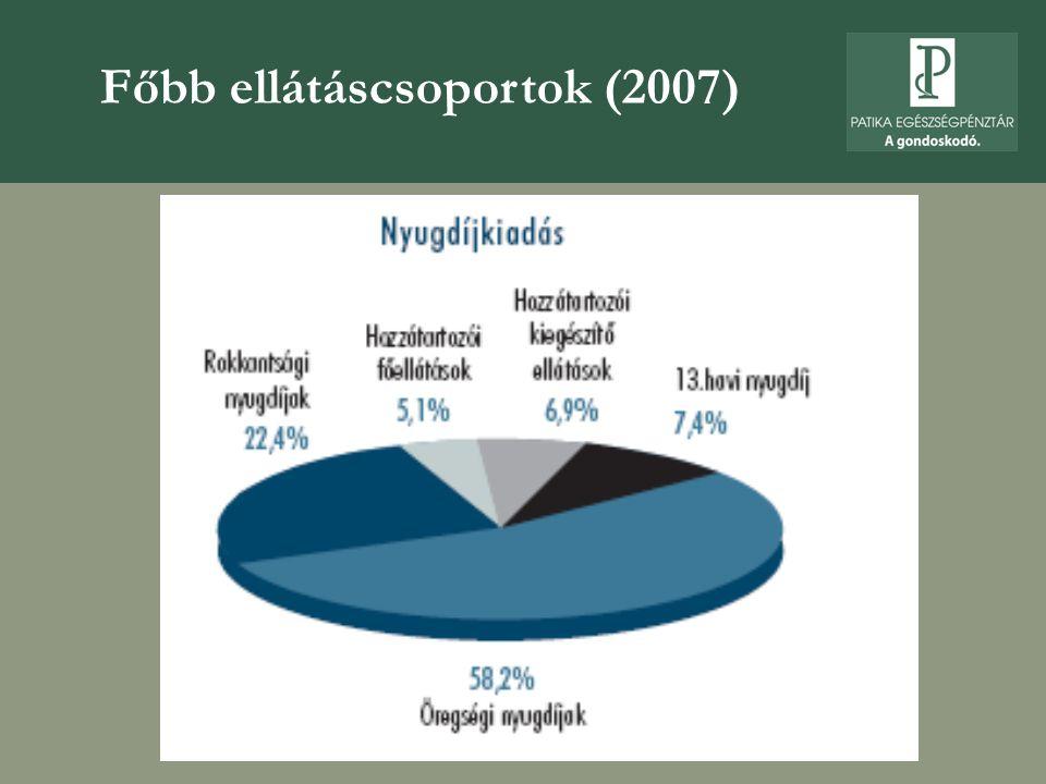 Főbb ellátáscsoportok (2007)