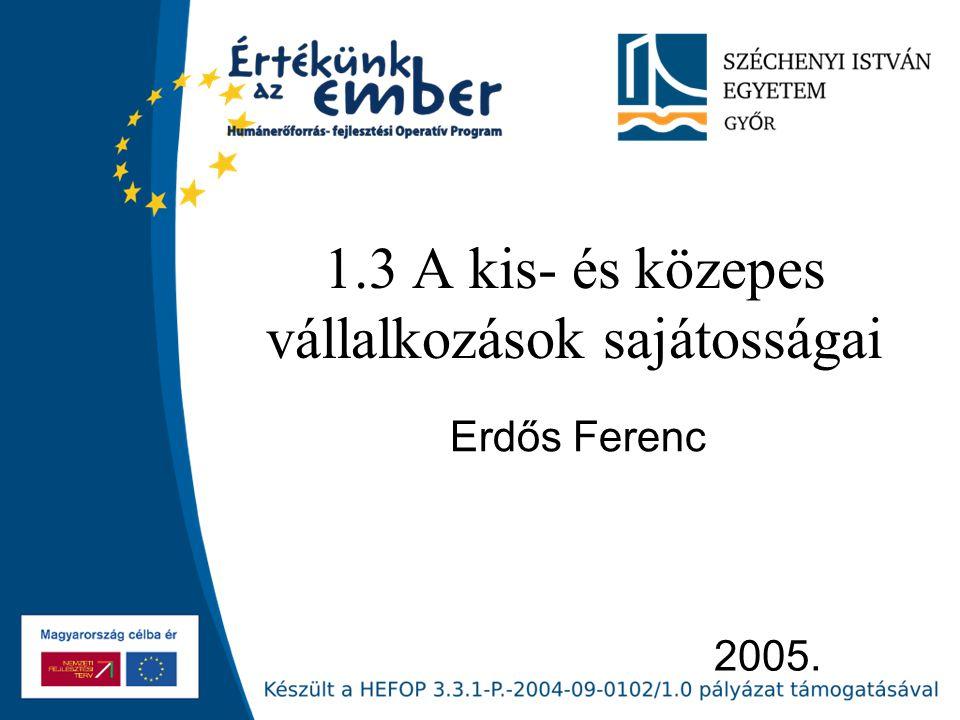 2005. 1.3 A kis- és közepes vállalkozások sajátosságai Erdős Ferenc