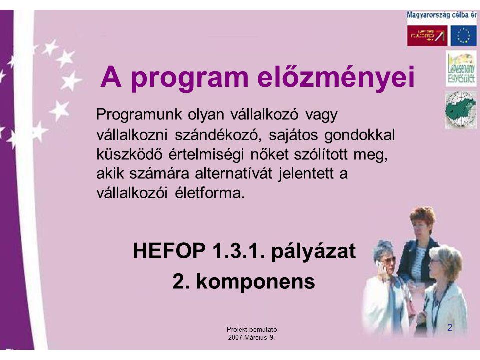 Projekt bemutató 2007.Március 9. 2 A program előzményei Programunk olyan vállalkozó vagy vállalkozni szándékozó, sajátos gondokkal küszködő értelmiség