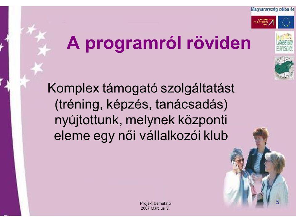 Projekt bemutató 2007.Március 9. 5 A programról röviden Komplex támogató szolgáltatást (tréning, képzés, tanácsadás) nyújtottunk, melynek központi ele